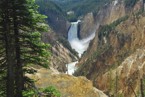 box springs opening closing dates yellowstone national park lodges