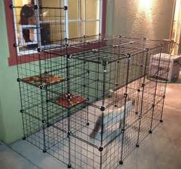 diy cat enclosure how to build an outdoor cat run diy projects for everyone