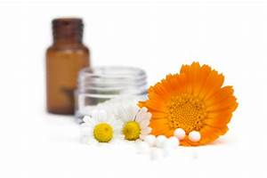 Homeopathic Remedies and Treatment - About Homeopathic Treatment - Homeopathy has specific ... Homeopathy