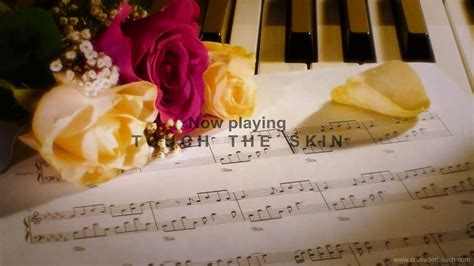Wedding Songs Beautiful Instrumental Piano Music Best