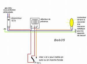 Branchement Detecteur De Mouvement : montage eclairage exterieur ~ Dailycaller-alerts.com Idées de Décoration