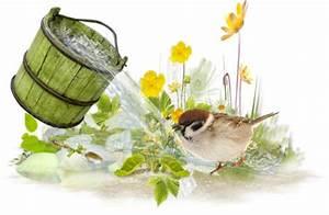 Pot De Fleur Transparent : tubes de printemps arrosoirs fontaines brouettes fleurs ~ Teatrodelosmanantiales.com Idées de Décoration