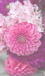 Free Floral Phone Wallpapers • Summer Collection • Capture ...