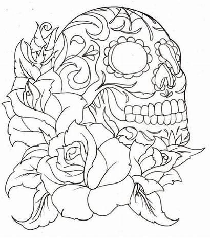 Skull Sugar Roses Skulls Drawings Coloring Tattoo