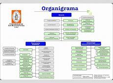 Organigrama de la USBCali Universidad de San
