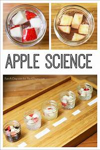 Apple Science Experiment For Preschool