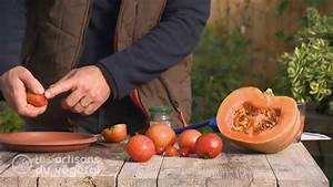 Planter Graine Tomate : planter des graines de tomates en pot comment planter ses tomates techniques et conseils pour ~ Dallasstarsshop.com Idées de Décoration