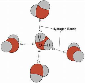 5.3: Polarity and Intermolecular Forces - Chemistry LibreTexts