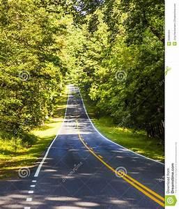 Beautiful Scenic Country Road Through Shenandoah ...
