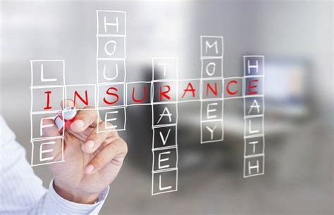 easily understand  insurance contract