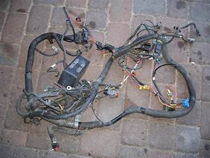 Front Wiring Harness For 1994  95 Trans Am