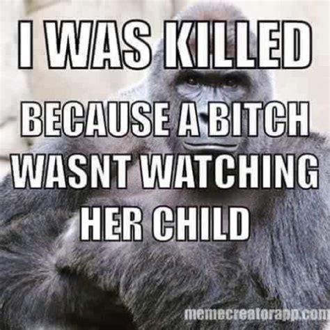 Gorilla Meme - the gorilla the boy the mom and the shamers free range kids