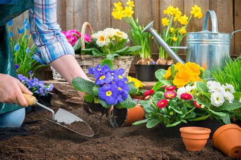 Der Frühling Ist Da Gartenarbeiten Im März  Blog Von