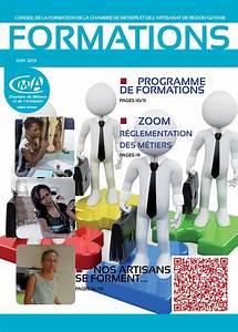 Artisanat De Guyane : calam o formation a la une magazine du conseil de la ~ Premium-room.com Idées de Décoration