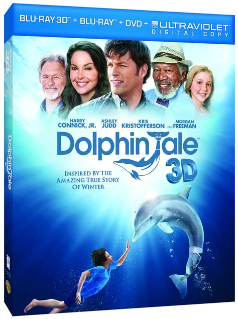 dolphin tale announced  def ninja blu ray steelbooks