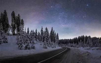 Forest Winter Night Pokljuka December Guides Program