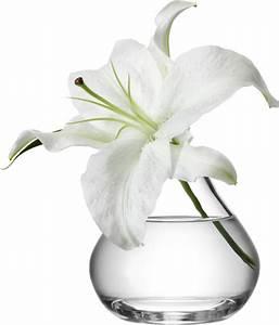 Vase Verre Transparent : composition florale dans grand vase transparent fleur dans vase transparent perfect comment ~ Teatrodelosmanantiales.com Idées de Décoration