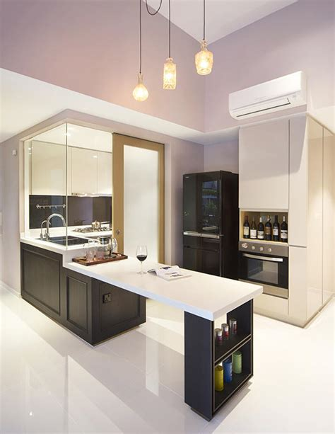 stylish homes   wet  dry kitchens home