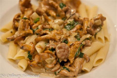 cuisiner chanterelle chanterelle pasta no ordinary homestead