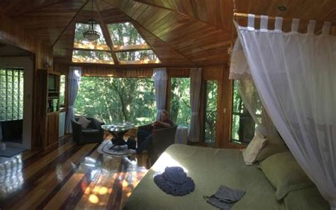 boutique canap glade room picture of canopy treehouses boutique