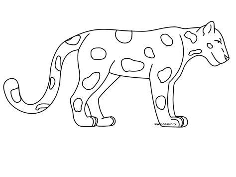 coloring jaguar