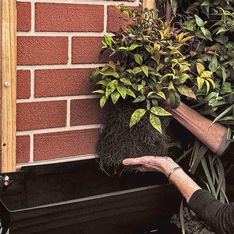 Diy Vertical Wall Garden by Wall Garden Diy Vertical Wallgarden System Plants Green