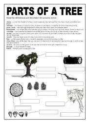 tree worksheets black  white worksheet