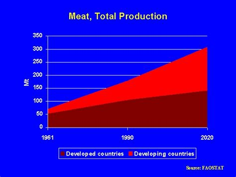 Meat, Total Production