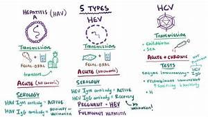 Overview of Acu... Hepatitis