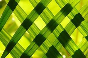 Green Woven Frame Free Stock Photo