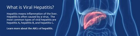 Division of Viral Hepatitis | CDC