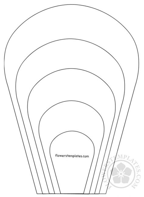 flower petal flowers templates part