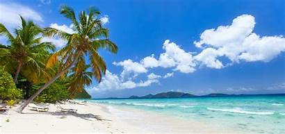 Tropical Sand Palm Trees Turquoise Travel Tweet