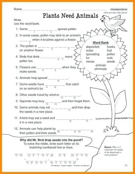 science worksheets   grade
