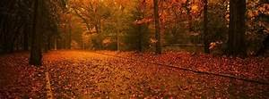25 Fall Facebook Covers