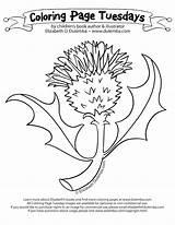 Scottish Pages Coloring Terrier Printable Getcolorings Getdrawings sketch template
