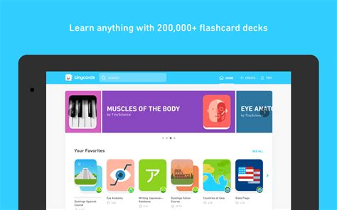 Duolingo Releases Its Tinycards Flashcards App On The Play Store