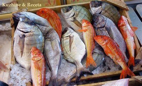 Kuzhine - Receta: Roli i peshkut ne organizmin e njeriut