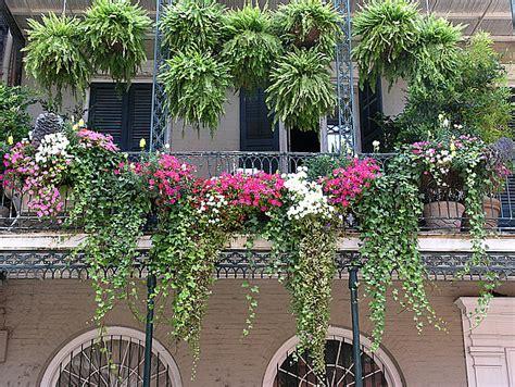 Plante De Jardinière by Un Potager Pour Votre Balcon Les Conseils Des Pros Du