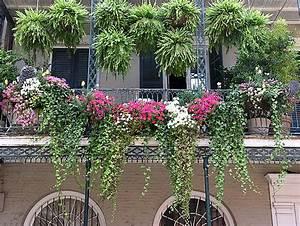 Plantes Et Fleurs Pour Balcon : un potager pour votre balcon les conseils des pros du ~ Premium-room.com Idées de Décoration