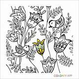Google Coloring Colorfy sketch template