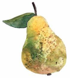 Conservation Des Poires : r colte et conservation des fruits d 39 automne mon chez moi ~ Melissatoandfro.com Idées de Décoration