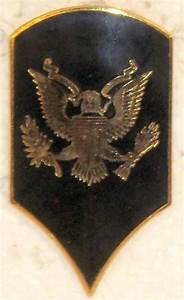 Us Army Specialist 3rd Class Or 4 Shiny Rank Insignia For