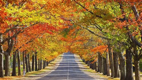 Beautiful Autumn Wallpapers by Beautiful Autumn Season Wallpapers All Hd Wallpapers