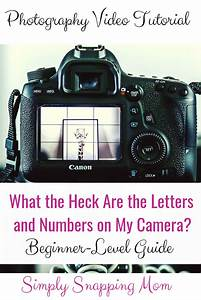 Beginner-level camera guide. Learn your camera settings with this easy to follow photography ...