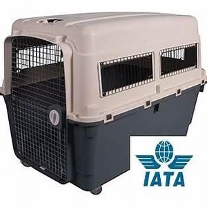 Grande Cage Pour Chien : caisse de transport pour chiens grande taille kennel la ~ Dode.kayakingforconservation.com Idées de Décoration