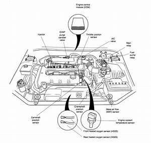 photos 2007 sportage crank sensor location crankshaft With low pressure switch together with 2011 kia sedona oil pressure switch