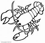 Coloring Pages Lobster Animals Printable Sea Template Templates sketch template