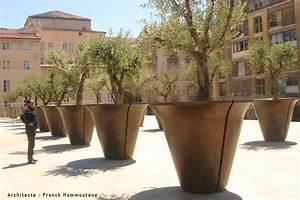 Arbre En Pot : pot arbre marseille ~ Premium-room.com Idées de Décoration