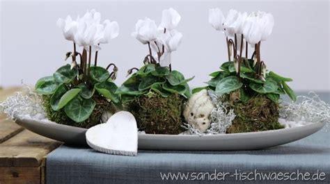 Weihnachtsdeko Auf Dem Gartentisch by Dekorieren Mit Alpenveilchen Blumen Auf Dem Tisch